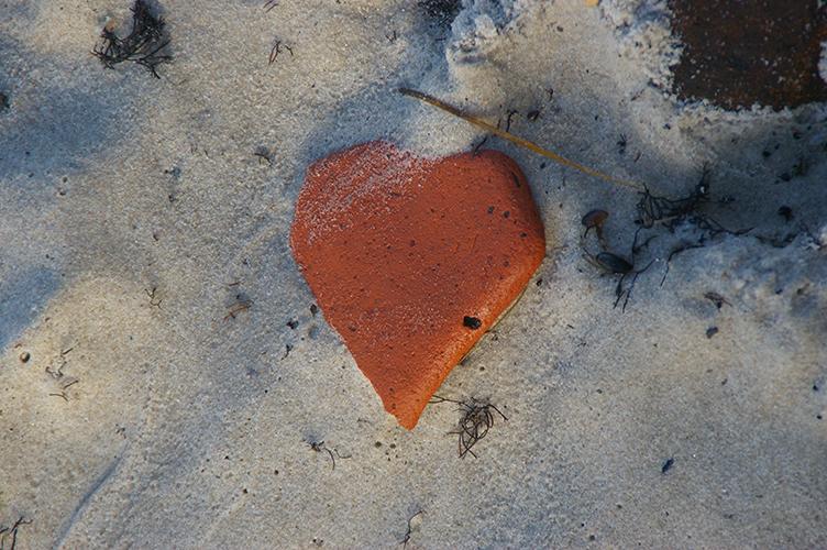 heart_05_09_15_small